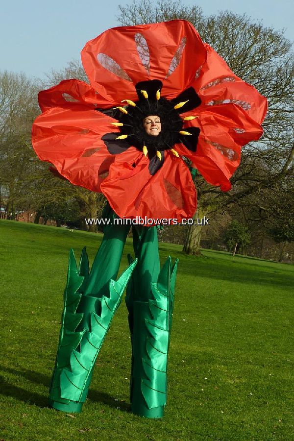 Poppy Stilt Walker